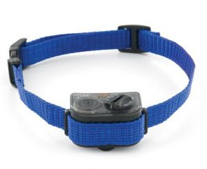 PetSafe Elite Spray Bark Collar for Small Dogs
