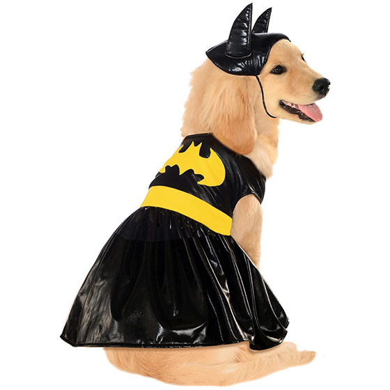 Bat Girl dog costume