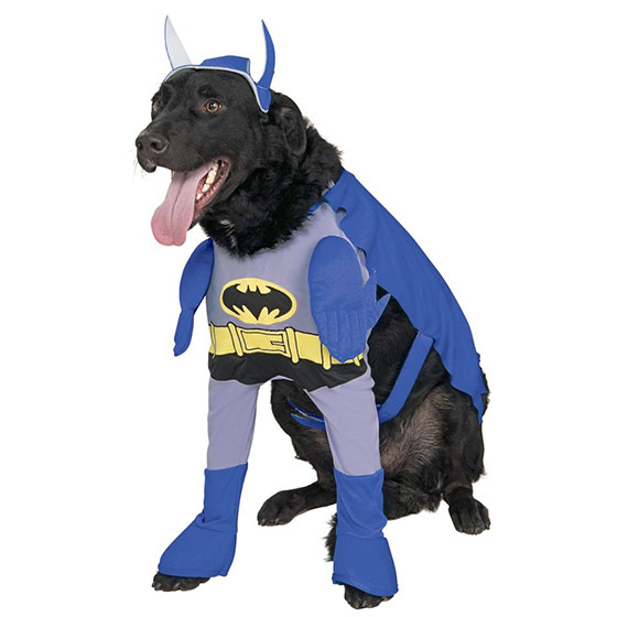 Batman blue dog costume