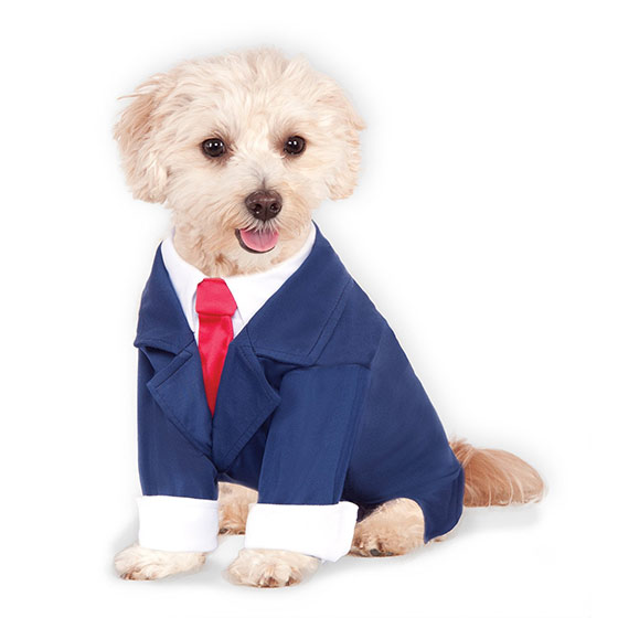 Business Suit costume for dogs