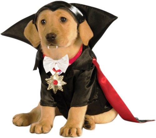 Dracula dog costume
