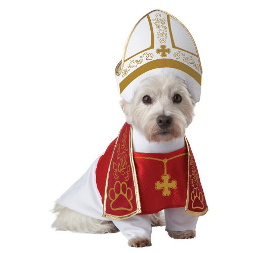 Holy Hound Pope dog costume