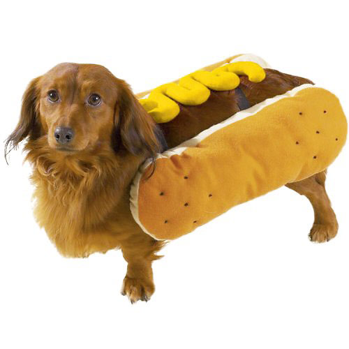 Hot Dog with Mustard dog costume