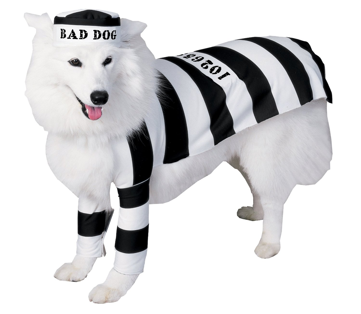 Jail dog costume
