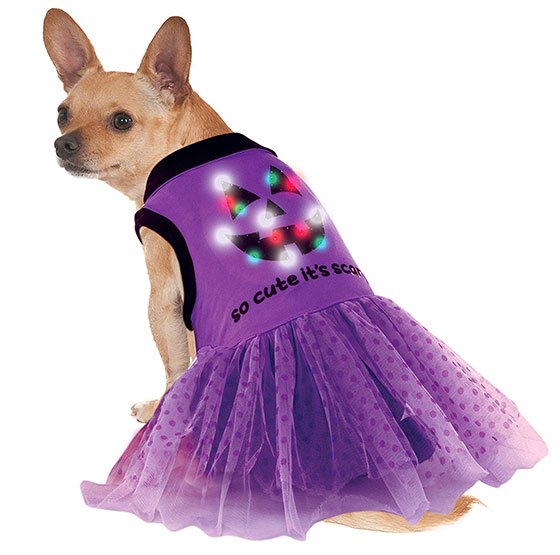 LED Light Up Purple Halloween Dress for dogs