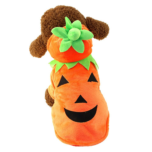 Mewtogo Dog Pumpkin Halloween costume