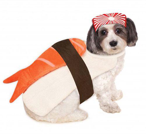 Sushi dog costume