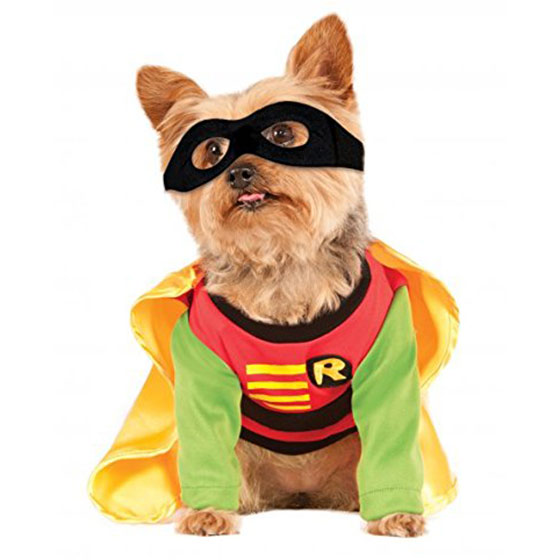 Teen Titans dog costume
