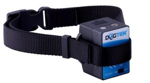 DogTek spray collar for bark training