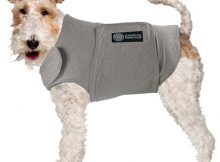 American Kennel Club dog calming coat