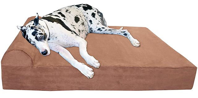 Big Barker orthopedic bed for large dogs
