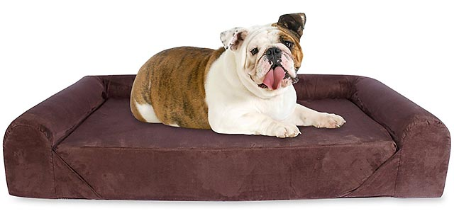 Kopeks Deluxe Memory Foam Sofa for dogs