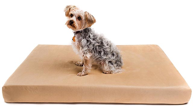 Romilton The Charlie Premium Orthopedic Memory Foam Dog Bed