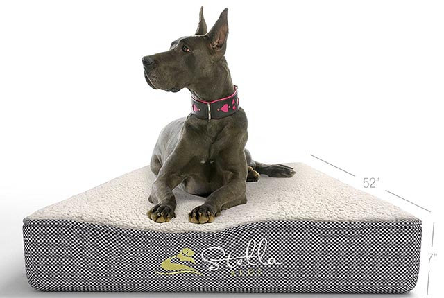 Stella Beds orthopedic dog bed