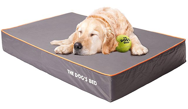 "The large and X-large size of The Dog's Bed are 6"" high, making them one of the thickest orthopedic dog beds available."