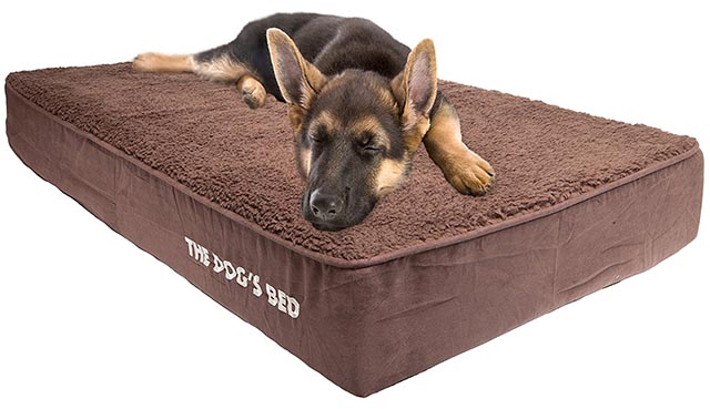 The Dog's Bed Orthopedic Memory Foam dog bed