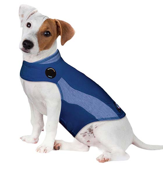 ThunderShirt Polo anti-anxiety dog jacket