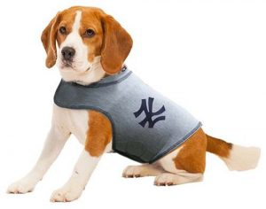 ThunderShirt Polo jacket MLB licensed