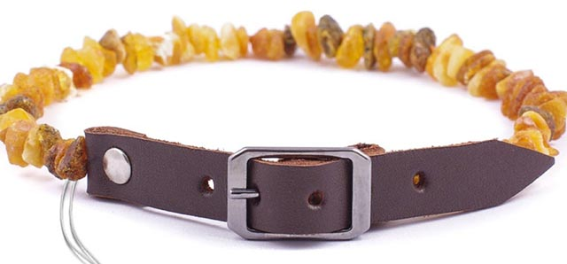 Baltic Amber natural flea collar for dogs
