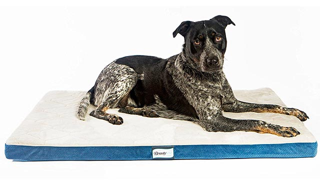 The Simmons Beautyrest is an ideal orthopedic memory foam bed for dog crates and kennels